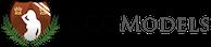 CCG Models Logo